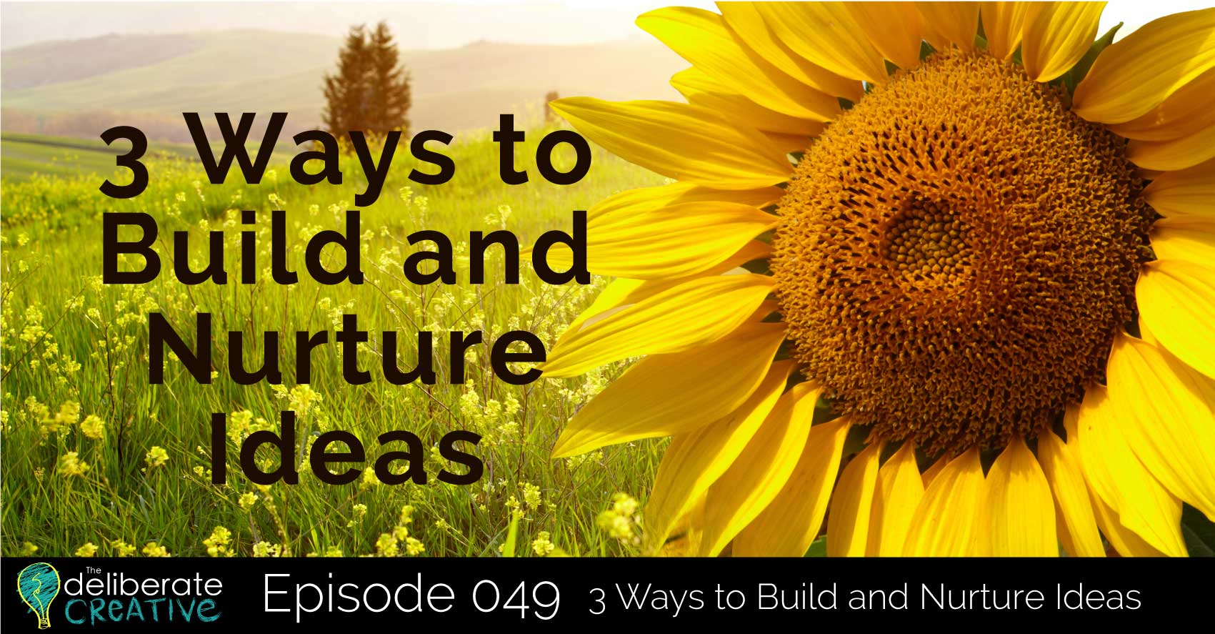 The Deliberate Creative Episode 49: 3 Ways to Build and Nurture Ideas